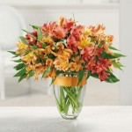 awesome-alstroemeria-vase-1331157496
