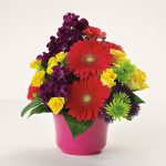 bowl-of-bright-wishes-1331233382-jpg